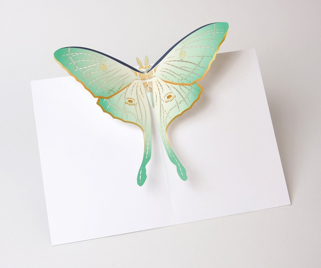 Luna moth pop up card uwp