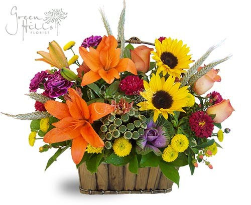 Bright Spark by Green Hills Florist