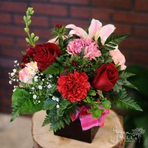 Weekly special flower gift, San Pedro flowers