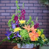 Birthday flower delivered to Rancho Palos Verdes, San Pedro, Lomita