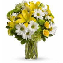 Sunshine Greetings by Green Hills Florist