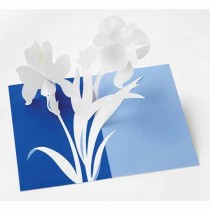 Iris Pop Up card by Robert Sabuda