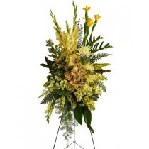 Sunshine Spray by Green Hills Florist