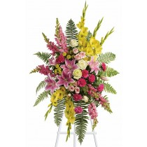 Rays of Light Spray by Green Hills Florist