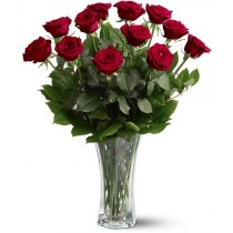 One dozen premium red roses by Green Hills Florist