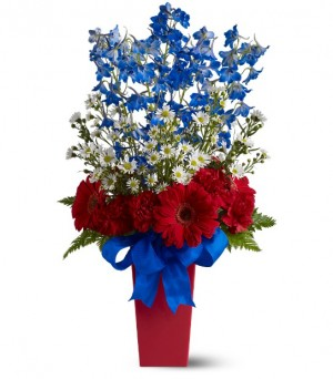 Freedom Fireworks by Green Hills Florist