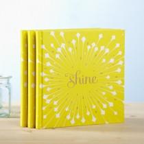 Shine gift book