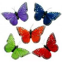 Butterflies by Green Hills Florist