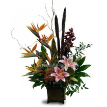 Yearning by Greenhills.florist