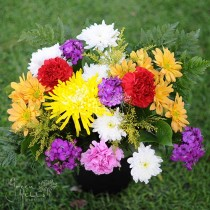 Mixed bouquet by Green Hills Flower Shop