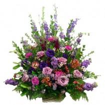 Lavender Grace