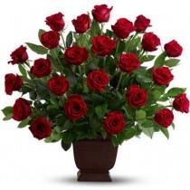 Rose Tribute Arrangement