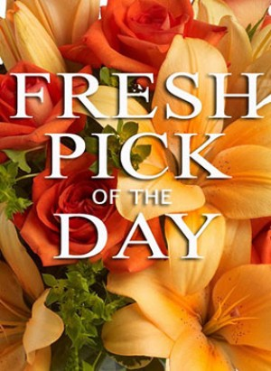 *Deal of the Day - Sympathy Arrangement